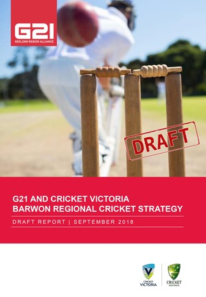 G21 Cricket Strategy