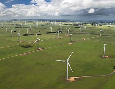 Vestas wind farm