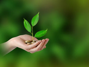 Investment growth - hand with tree